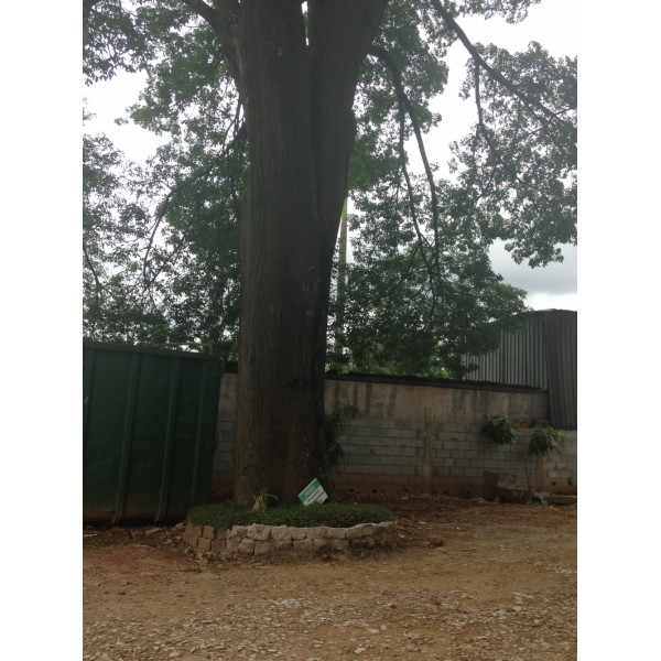 Serviços de Locações de Caçambas para Entulho para Obra no Jardim Bom Pastor - Caçamba de Entulho Preço